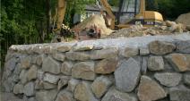 Services: Steinmauern / Biotope